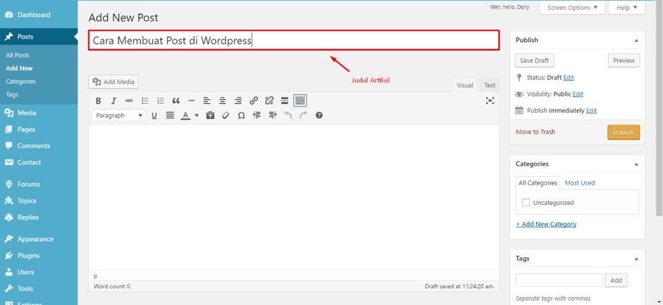 cara-membuat-postingan-di-wordpress-3