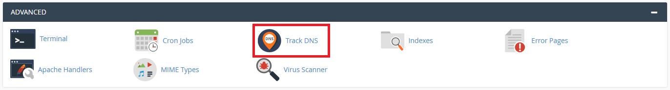 Mengenal Track DNS di cPanel